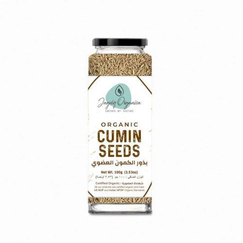 Organic Cumin Seeds Whole -100gm