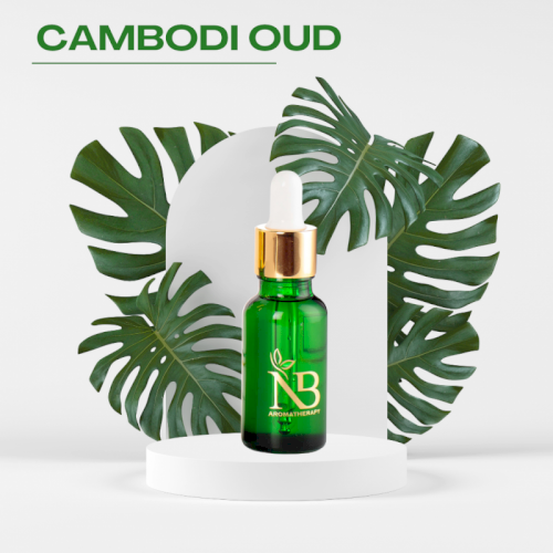 Cambodi Oud